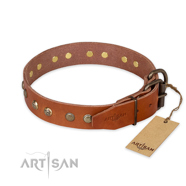 Reliable D-ring on leather collar for your impressive four-legged friend