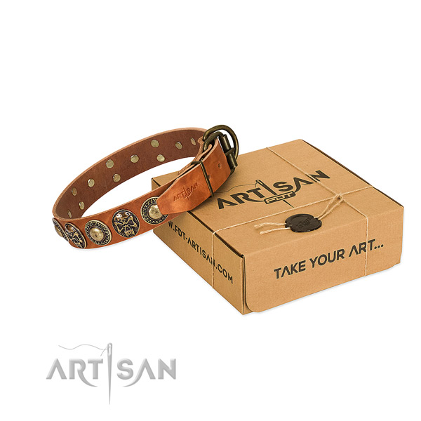 Rust resistant decorations on dog collar for comfy wearing