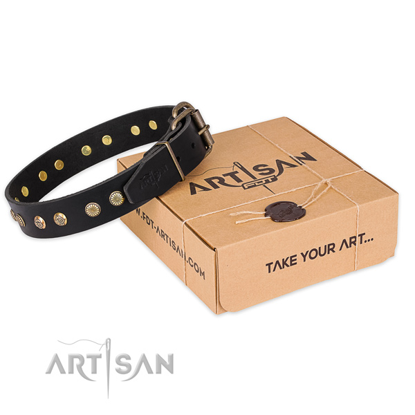 Corrosion proof buckle on leather collar for your beautiful doggie