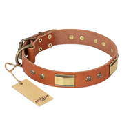 """Enchanting Spectacle"" FDT Artisan Tan Leather American Bulldog Collar with Old Bronze Look Plates and Round Studs"