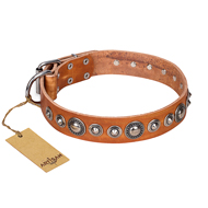 """Daily Chic"" FDT Artisan Tan Leather American Bulldog Collar with Decorations"