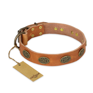 """Magic Amulet"" FDT Artisan Tan Leather American Bulldog Collar with Oval Studs"