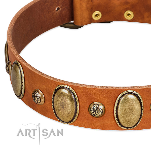 Natural leather dog collar with inimitable adornments