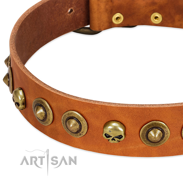 Stylish studs on full grain natural leather collar for your pet