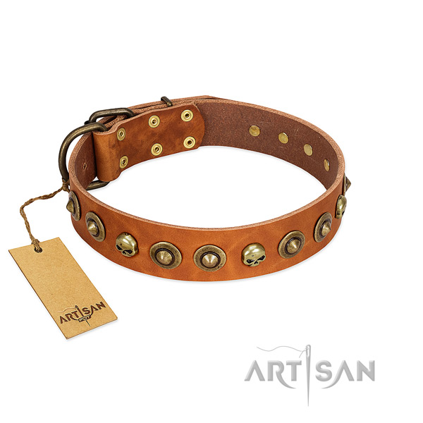 Leather collar with exquisite embellishments for your four-legged friend