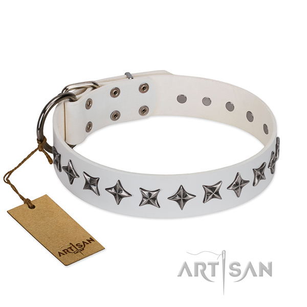 Daily use dog collar of strong full grain leather with embellishments