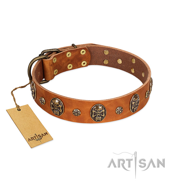 Extraordinary genuine leather collar for your pet