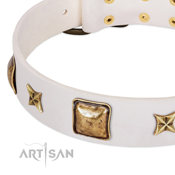 Durable studs on full grain natural leather dog collar for your canine