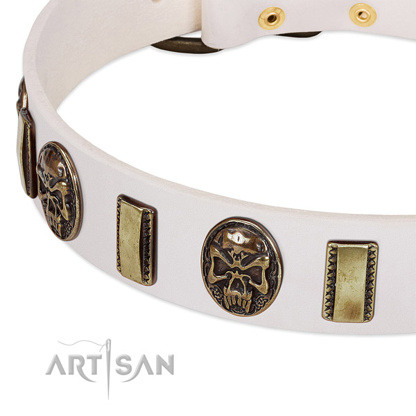Corrosion proof hardware on leather dog collar for your four-legged friend