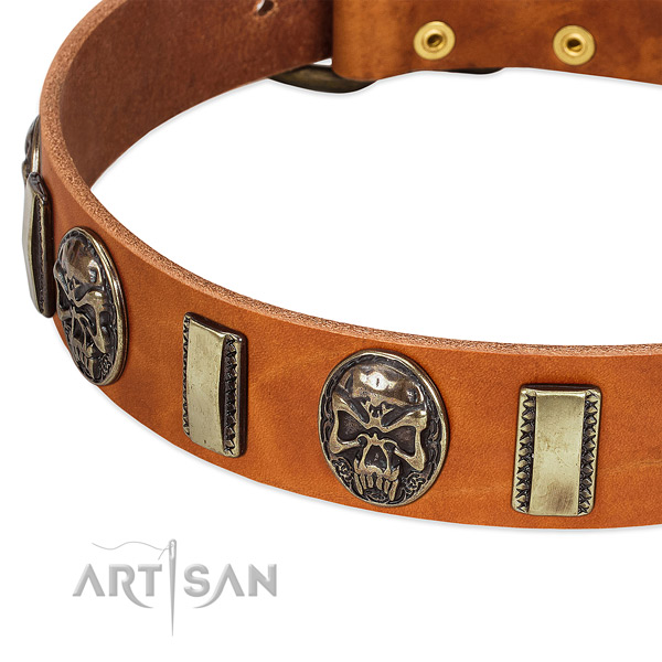 Corrosion proof traditional buckle on full grain leather dog collar for your four-legged friend