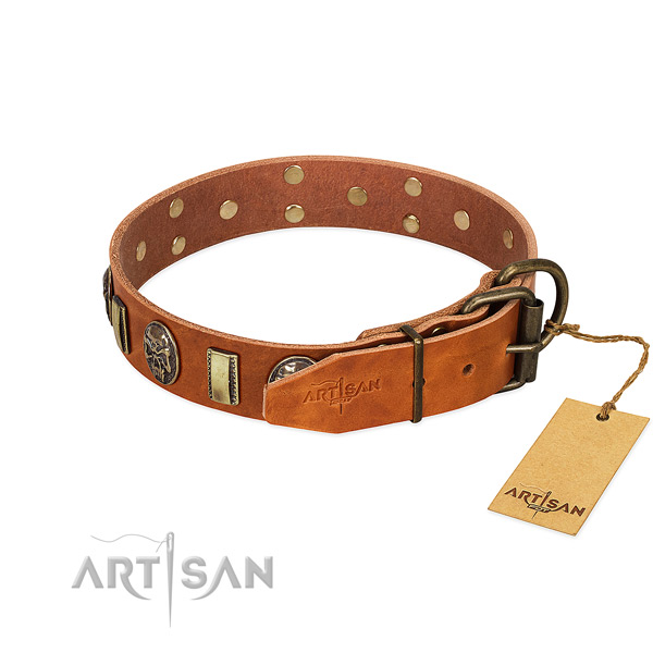 Full grain genuine leather dog collar with strong buckle and studs