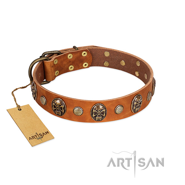 Easy adjustable natural genuine leather dog collar for stylish walking