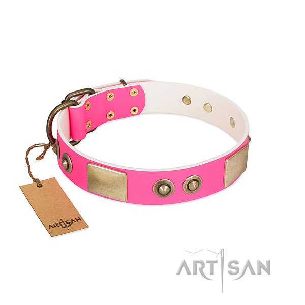 Rust-proof embellishments on full grain leather dog collar for your four-legged friend