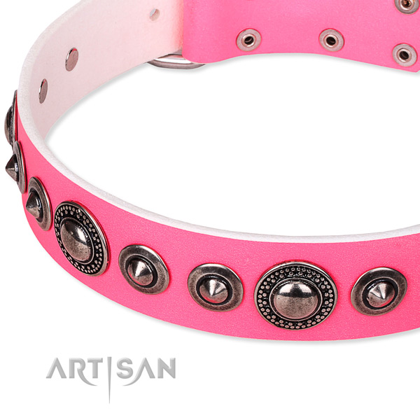 Fancy walking embellished dog collar of top quality full grain natural leather