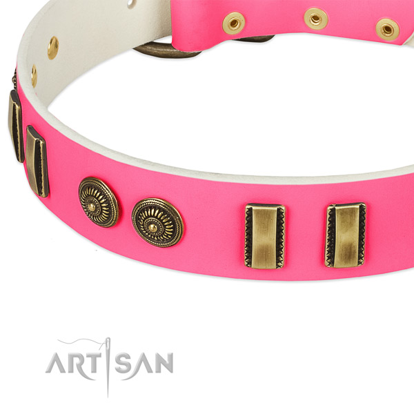 Reliable embellishments on full grain genuine leather dog collar for your canine
