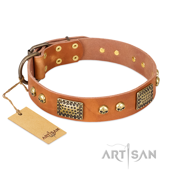 Easy wearing natural leather dog collar for daily walking your dog