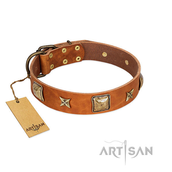 Designer leather collar for your dog