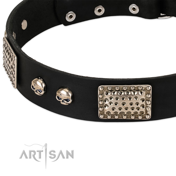 Rust-proof studs on genuine leather dog collar for your doggie