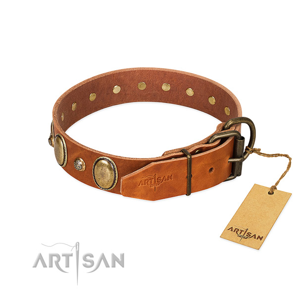 Exquisite leather dog collar with rust-proof buckle