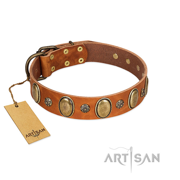 Everyday walking reliable full grain natural leather dog collar with decorations