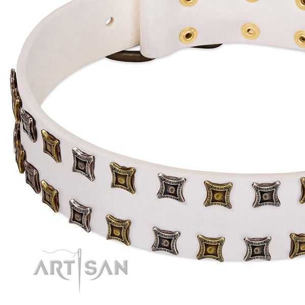 Reliable full grain natural leather dog collar for your lovely doggie