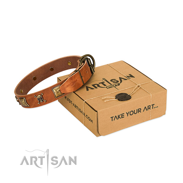 Unusual full grain leather dog collar with rust resistant adornments
