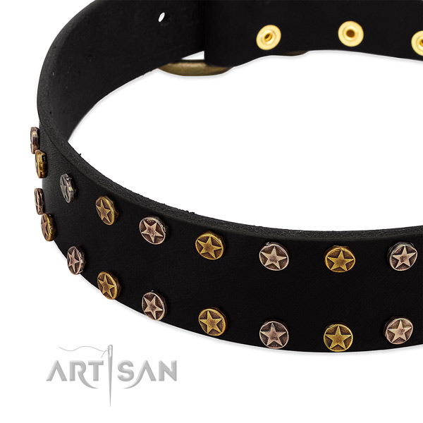 Unusual studs on natural leather collar for your canine
