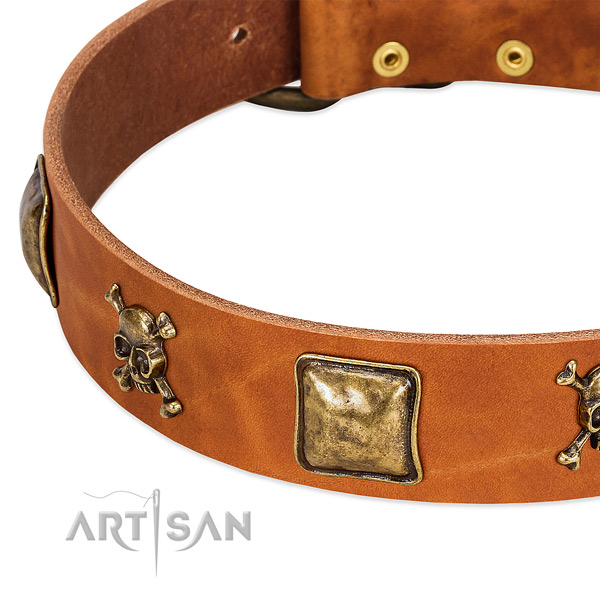 Extraordinary full grain genuine leather dog collar with corrosion resistant embellishments