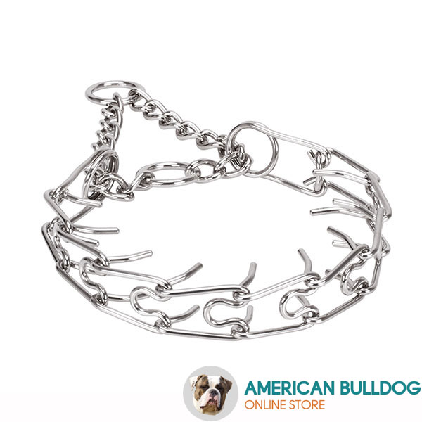 Rust resistant stainless steel dog prong collar with removable prongs