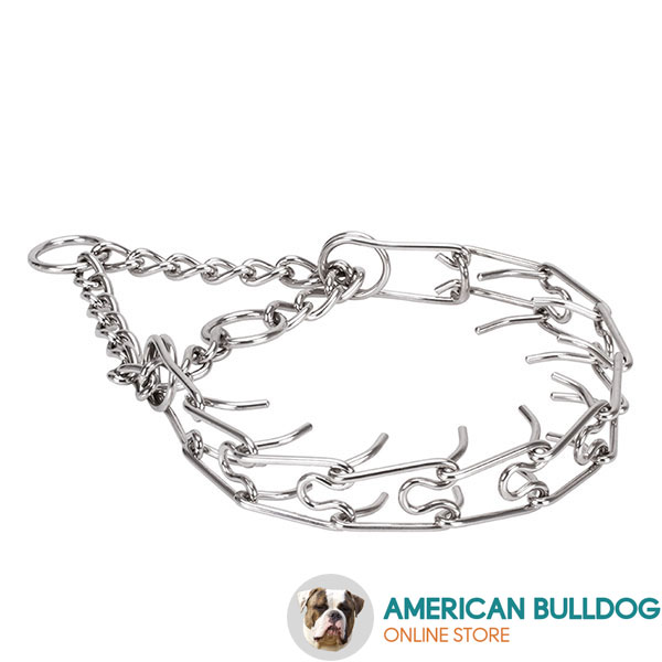 Corrosion proof stainless steel pinch collar for aggressive dogs