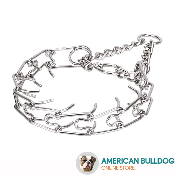 Dependable stainless steel dog pinch collar for large pets