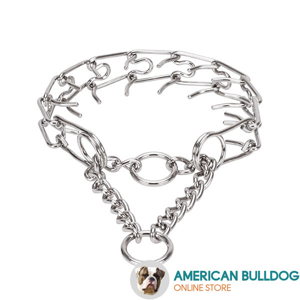 Durable stainless steel dog pinch collar with corrosion proof removable prongs