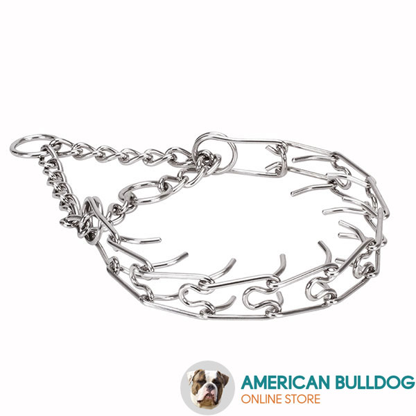 Stainless steel prong collar for ill behaved dogs