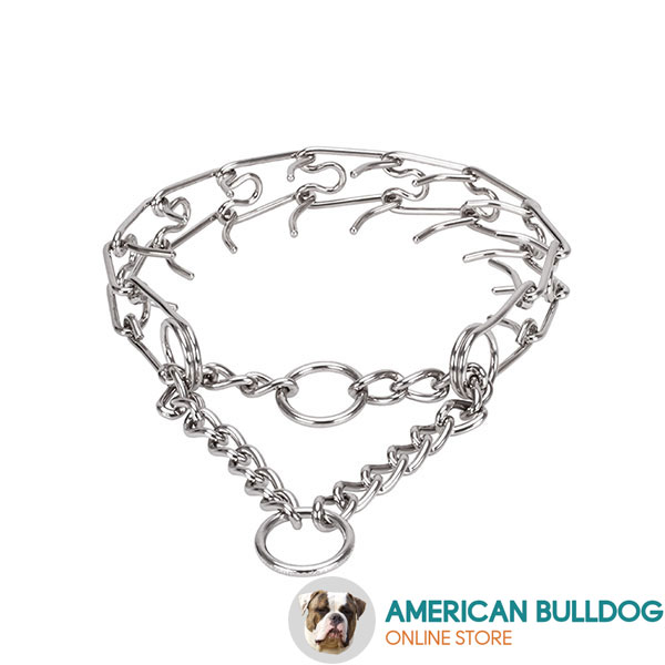 Pinch collar of corrosion resistant stainless steel for poorly behaved dogs