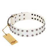 """White Night"" FDT Artisan White Leather American Bulldog Collar with Vinatge Silver-like Studs"