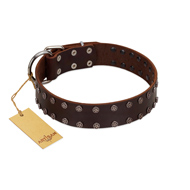"""Star Party"" Handmade FDT Artisan Brown Leather American Bulldog Collar with Silver-Like Studs"
