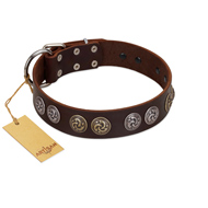 """Treasure Hunter"" FDT Artisan Brown Leather American Bulldog Collar with Old-Bronze-like and Silvery Medallions"