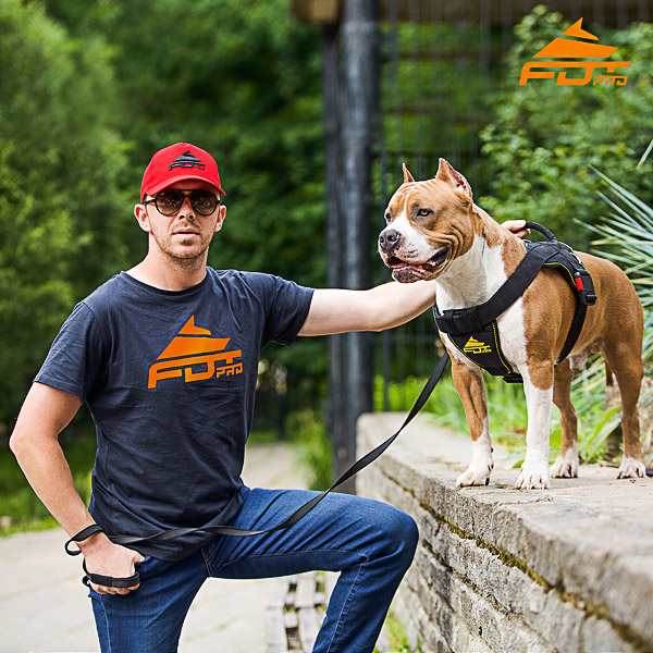 Men T-shirt of High Quality Cotton with Pro Logo for Dog Trainers