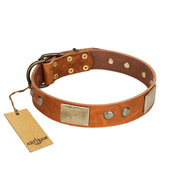 """Ancient Treasures"" FDT Artisan Tan Leather American Bulldog Collar with Antiqued Plates and Studs"