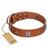 """Lucky Star"" FDT Artisan Tan Leather American Bulldog Collar with Silver-Like Embellishments"