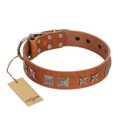 """Antique Figures"" FDT Artisan Tan Leather American Bulldog Collar with Silver-like Engraved Plates"