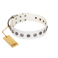 """Solar Energy"" FDT Artisan White Leather American Bulldog Collar with Silver-like Studs and Medallions"