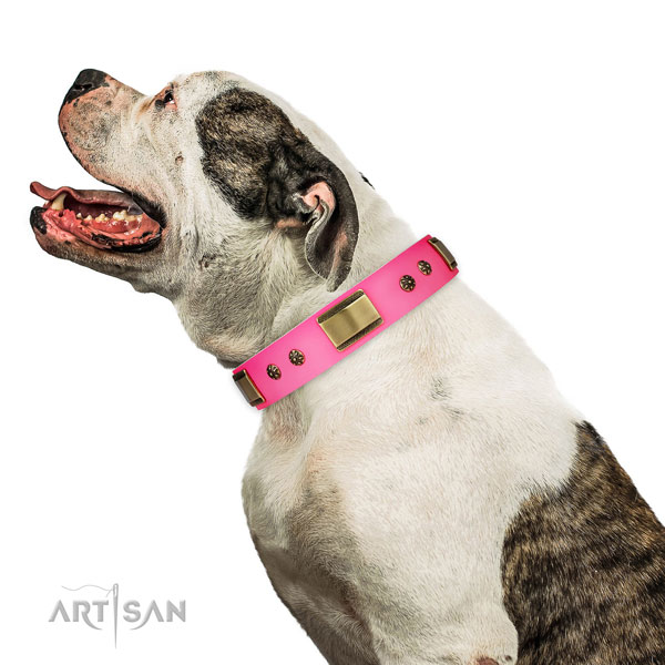 Easy wearing dog collar of natural leather with impressive decorations
