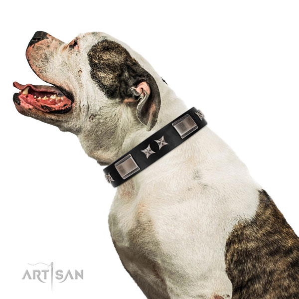 Stylish walking soft to touch full grain genuine leather dog collar with adornments