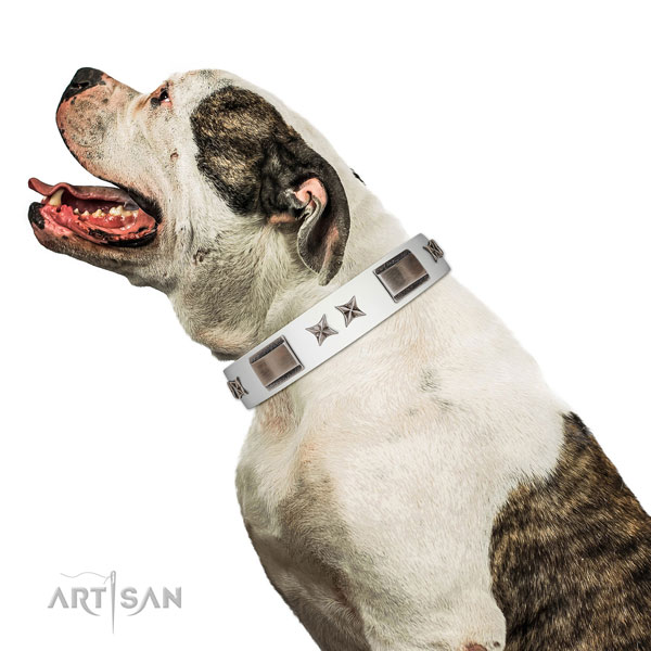 Adjustable collar of full grain leather for your handsome canine