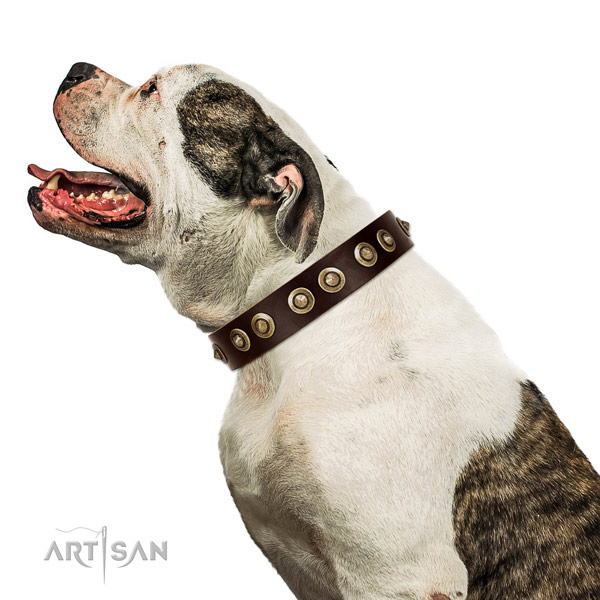 Corrosion resistant D-ring on leather dog collar for handy use