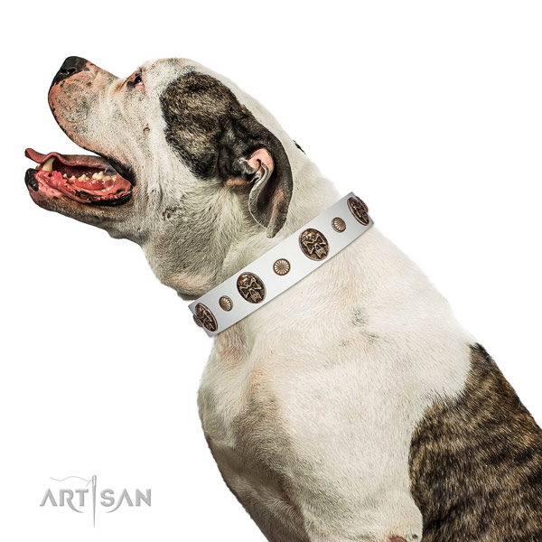 Natural leather dog collar with extraordinary adornments