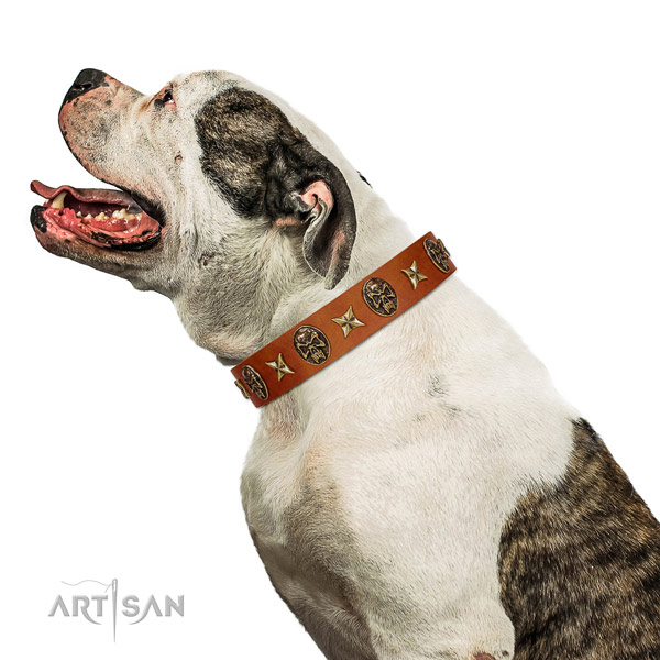 Comfortable genuine leather dog collar with adornments
