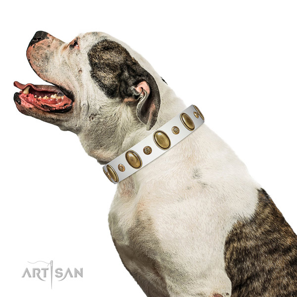 Awesome full grain leather dog collar with reliable D-ring