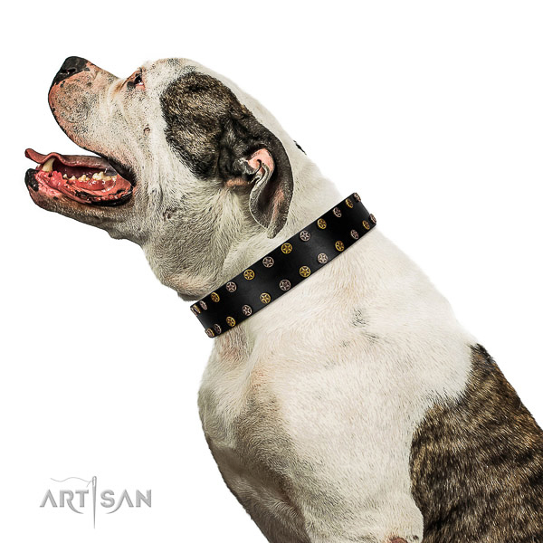 Inimitable full grain leather dog collar with corrosion proof decorations